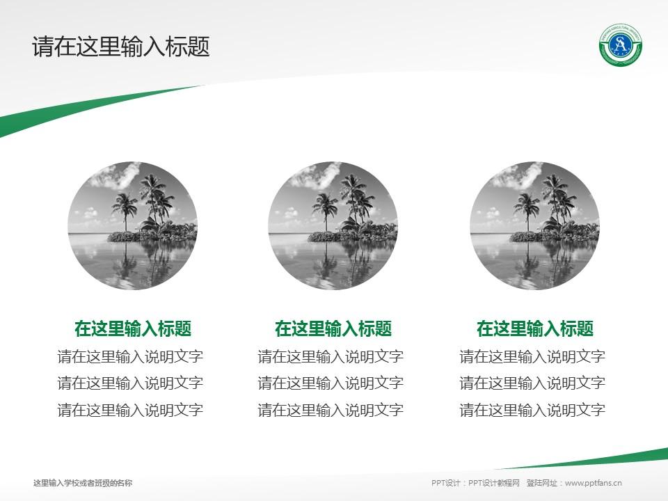 沈阳农业大学PPT模板下载_幻灯片预览图3
