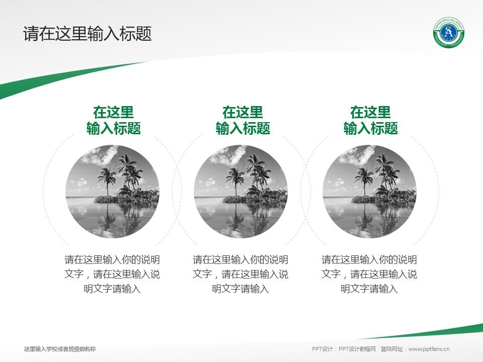 沈阳农业大学PPT模板下载_幻灯片预览图7