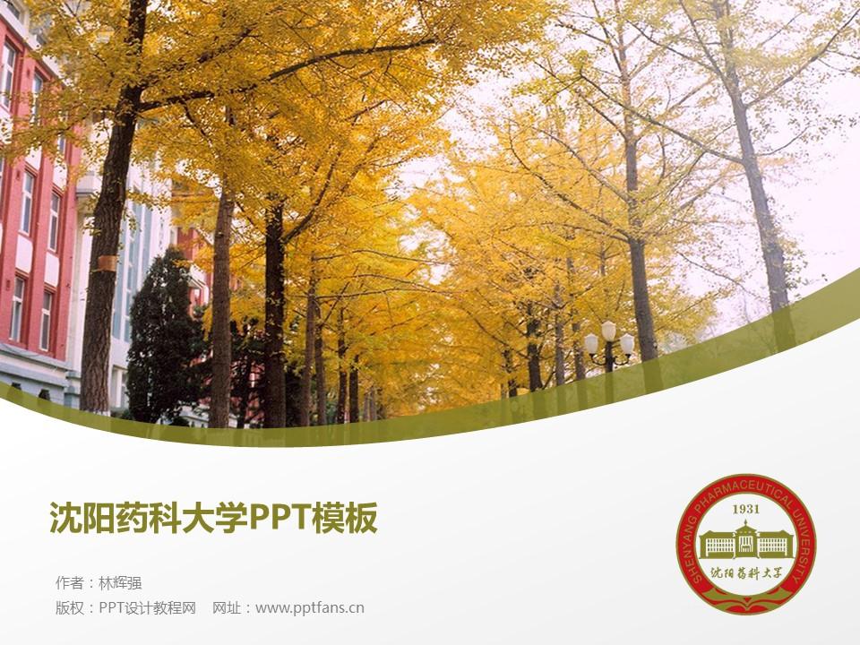 沈阳药科大学PPT模板下载_幻灯片预览图1