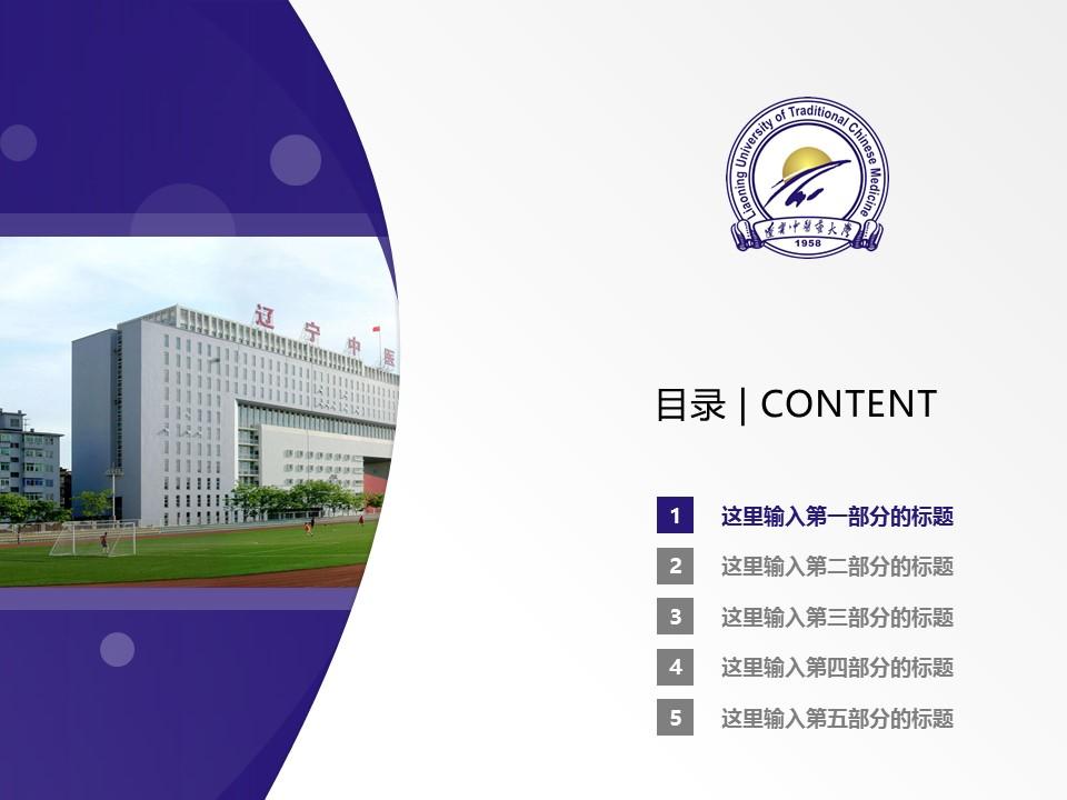 辽宁中医药大学PPT模板下载_幻灯片预览图2