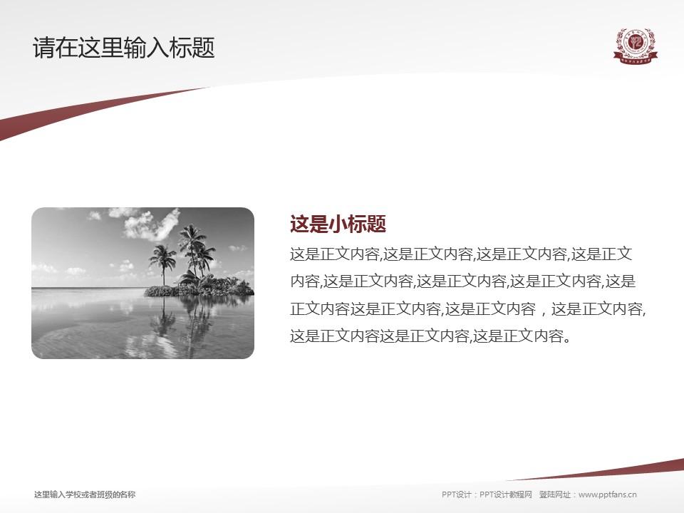 吉林艺术学院PPT模板_幻灯片预览图4
