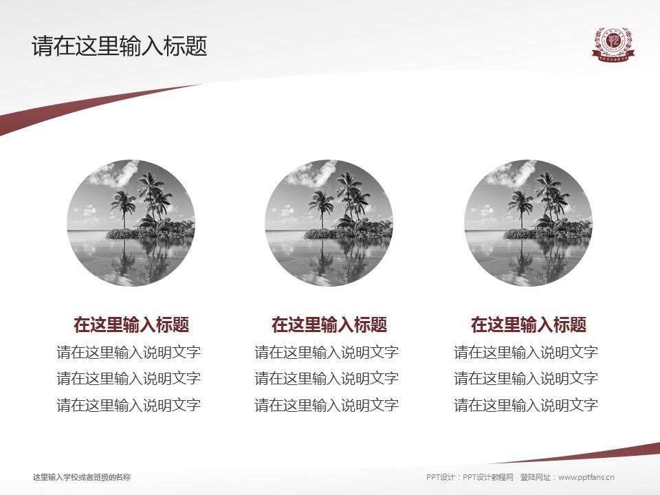 吉林艺术学院PPT模板_幻灯片预览图3
