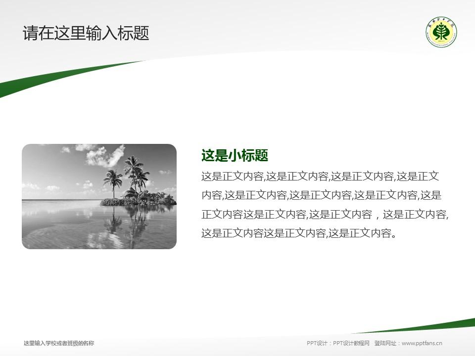武威职业学院PPT模板下载_幻灯片预览图4