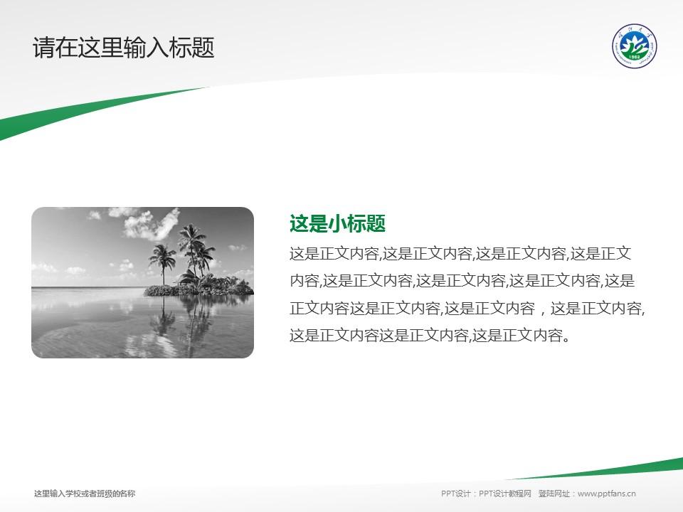 喀什大学PPT模板下载_幻灯片预览图4