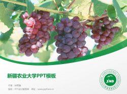 新疆农业大学PPT模板下载