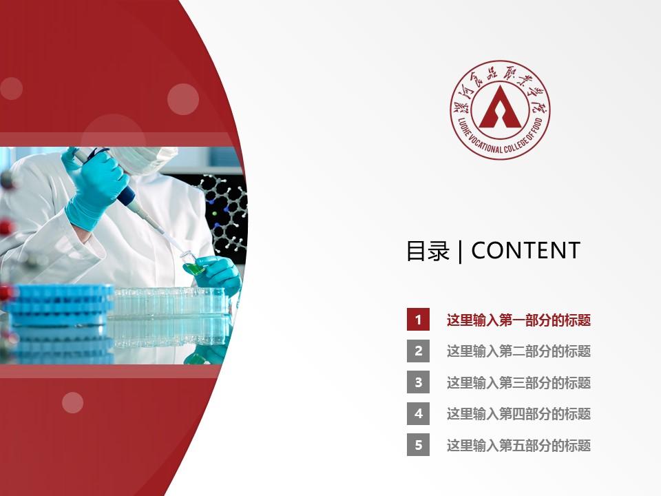 漯河食品职业学院PPT模板下载_幻灯片预览图2