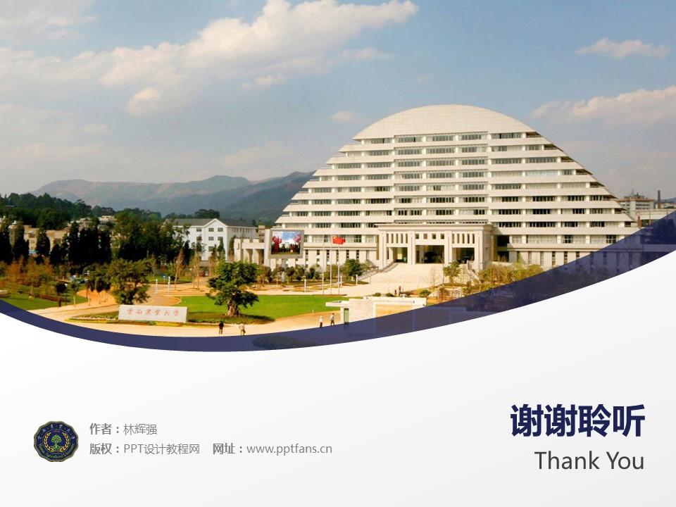 云南农业大学PPT模板下载_幻灯片预览图19