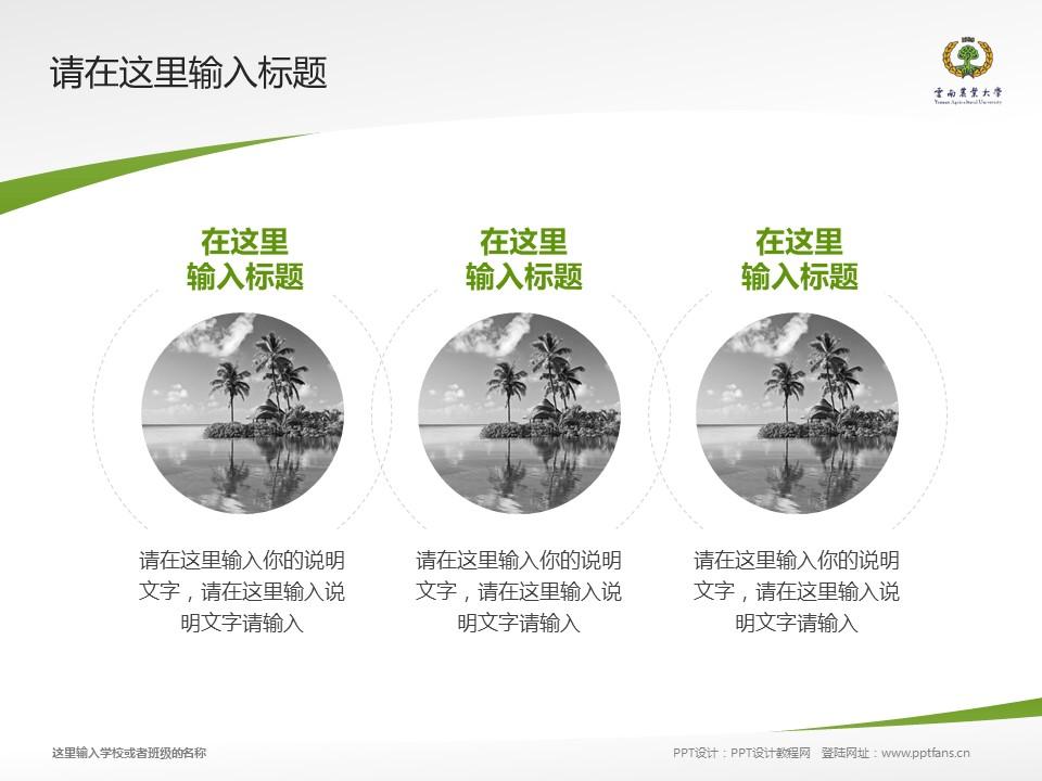 云南农业大学热带作物学院PPT模板下载_幻灯片预览图15