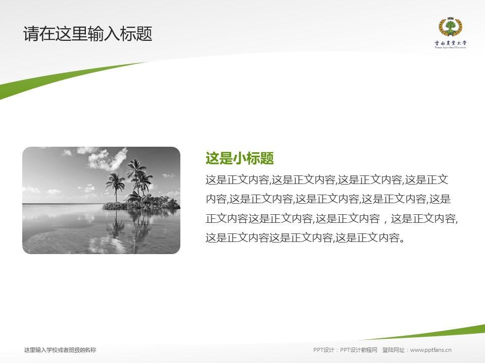 云南农业大学热带作物学院PPT模板下载_幻灯片预览图4