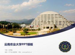 云南农业大学PPT模板下载