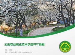 云南农业职业技术学院PPT模板下载