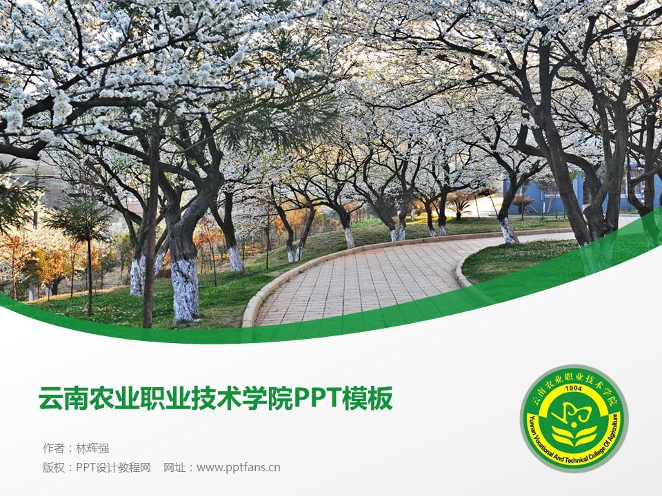 云南农业职业技术学院PPT模板下载_幻灯片预览图1