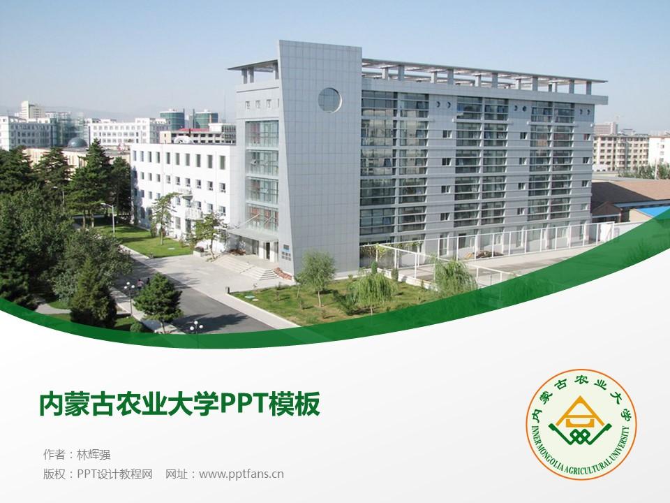 内蒙古农业大学PPT模板下载_幻灯片预览图1