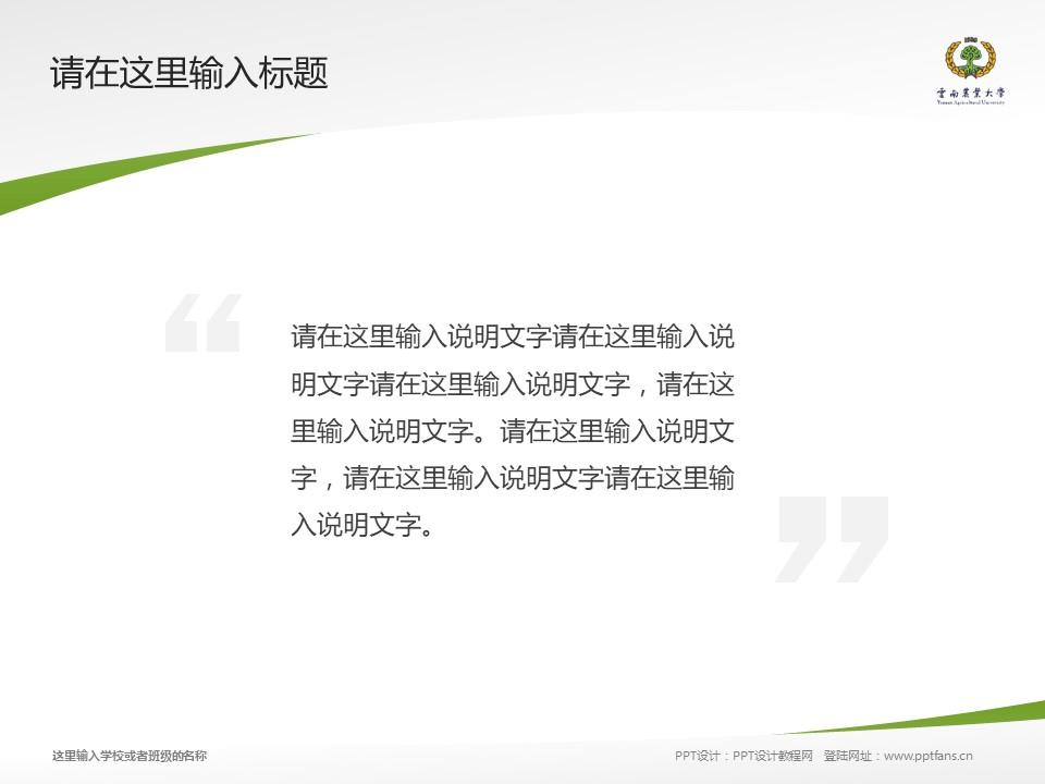 云南农业大学热带作物学院PPT模板下载_幻灯片预览图13