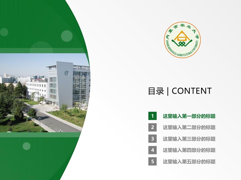 内蒙古农业大学PPT模板下载_幻灯片预览图2