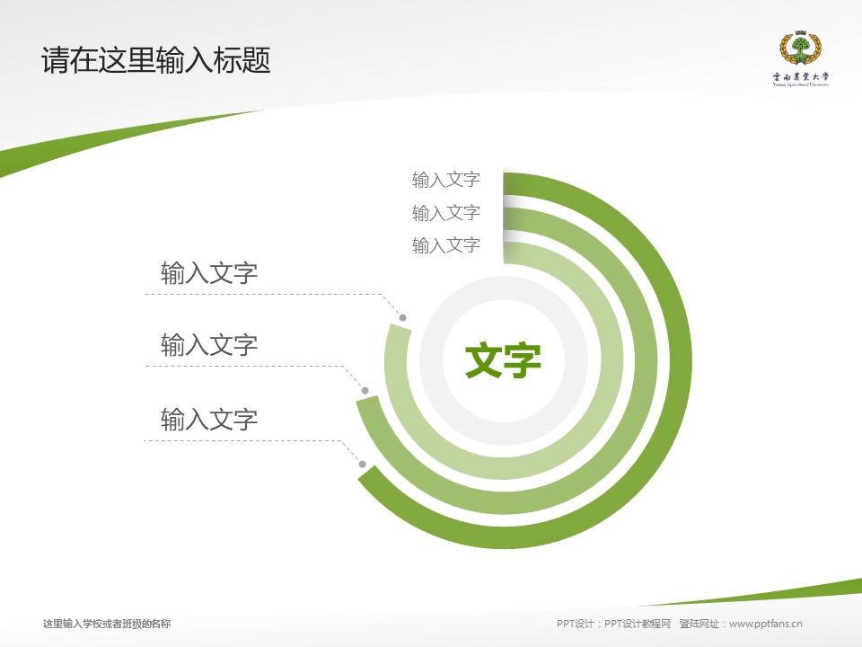云南农业大学热带作物学院PPT模板下载_幻灯片预览图5