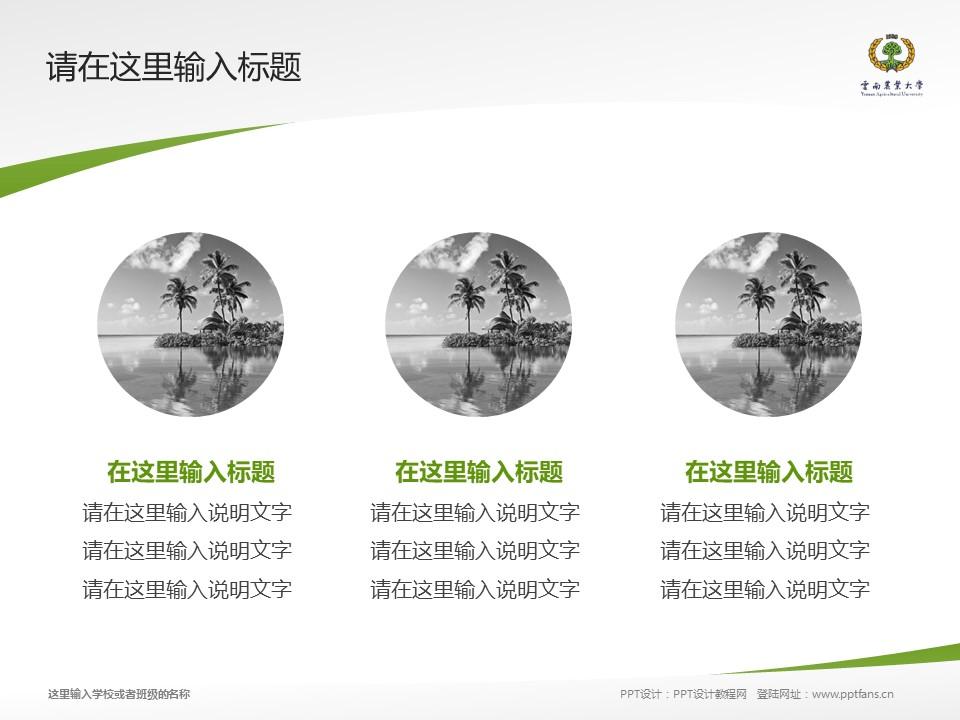 云南农业大学热带作物学院PPT模板下载_幻灯片预览图3