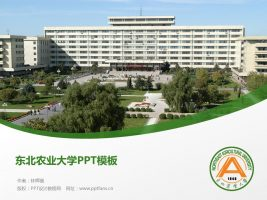 东北农业大学PPT模板下载
