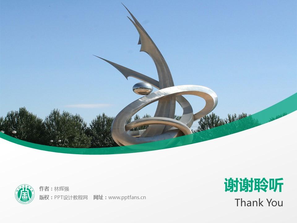 哈尔滨金融学院PPT模板下载_幻灯片预览图19