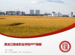 黑龙江粮食职业学院PPT模板下载