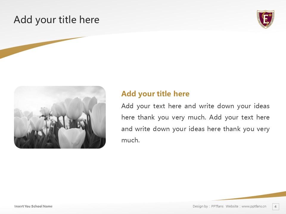 Shizuoka Eiwa Gakuin University Powerpoint Template Download | 静冈英和学院大学PPT模板下载_slide4