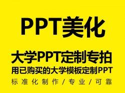 大学PPT定制/美化服务(暂仅针对已购买了大学模板的用户)