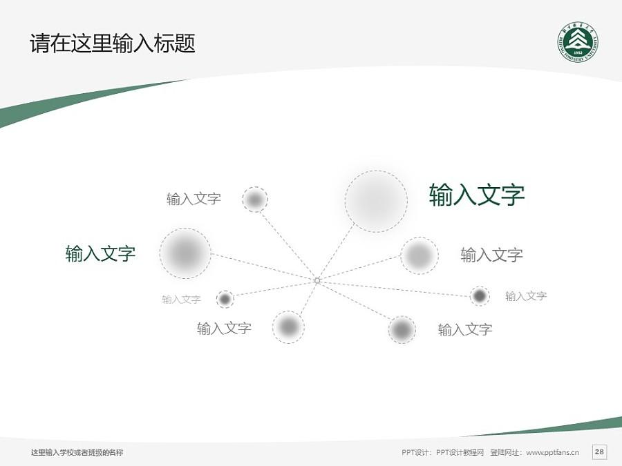 北京林业大学PPT模板下载_幻灯片预览图28