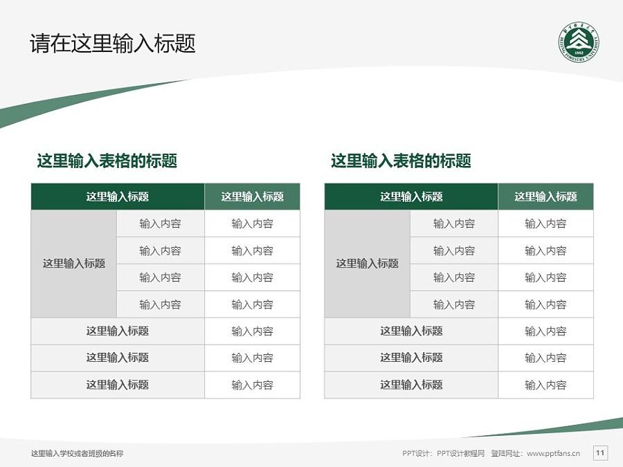 北京林业大学PPT模板下载_幻灯片预览图11