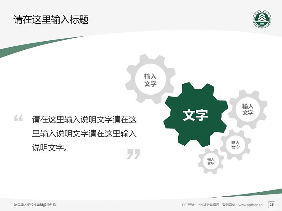 北京林业大学PPT模板下载_幻灯片预览图25