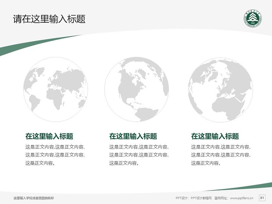 北京林业大学PPT模板下载_幻灯片预览图31