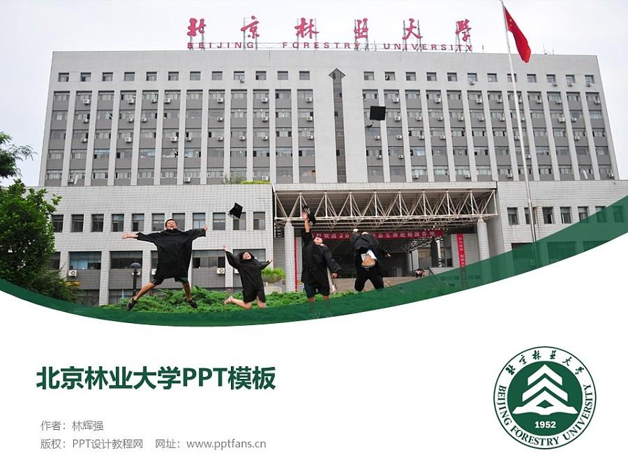 北京林业大学PPT模板下载_幻灯片预览图1