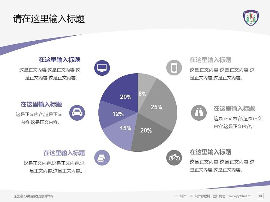 北京中医药大学PPT模板下载_幻灯片预览图13