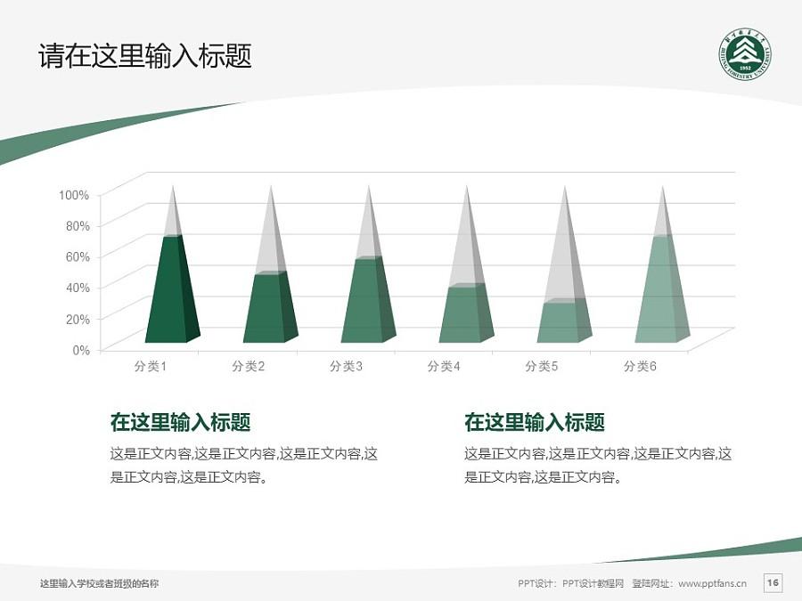 北京林业大学PPT模板下载_幻灯片预览图16