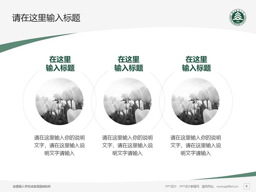 北京林业大学PPT模板下载_幻灯片预览图8