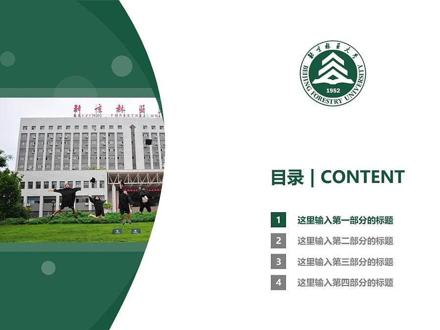 北京林业大学PPT模板下载_幻灯片预览图3