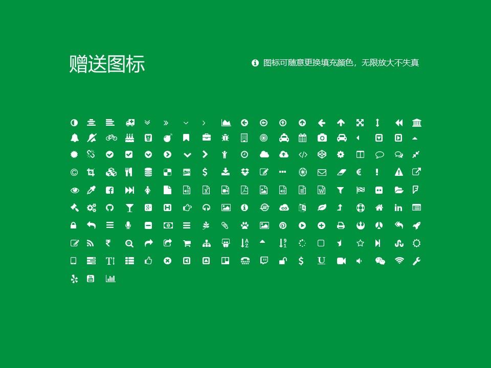 安徽现代信息工程职业学院PPT模板下载_幻灯片预览图35
