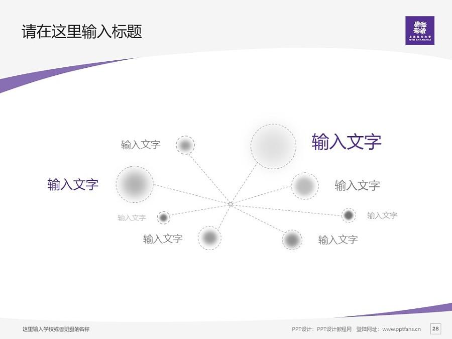 上海纽约大学PPT模板下载_幻灯片预览图28
