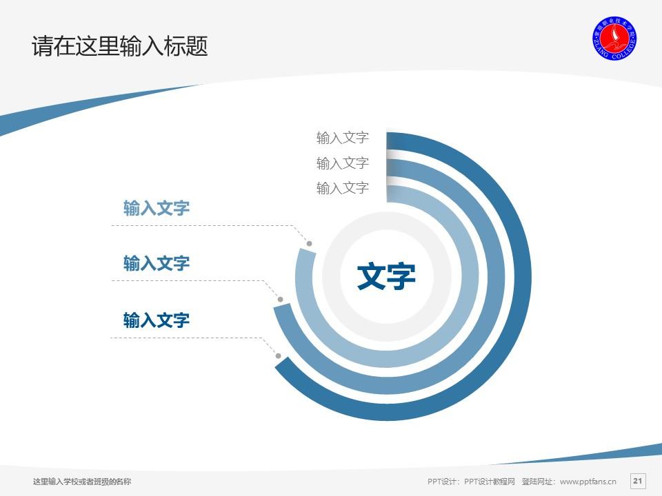 紫琅职业技术学院PPT模板下载_幻灯片预览图21
