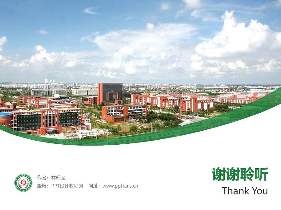 江苏农牧科技职业学院PPT模板下载_幻灯片预览图32