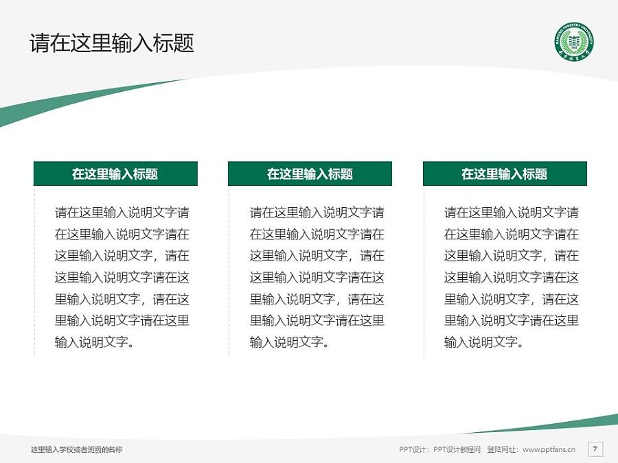 南京林业大学PPT模板下载_幻灯片预览图7