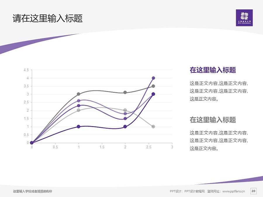 上海纽约大学PPT模板下载_幻灯片预览图20
