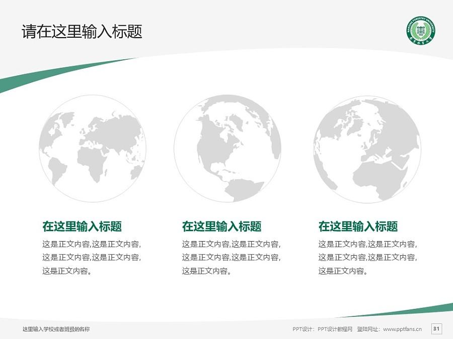 南京林业大学PPT模板下载_幻灯片预览图31