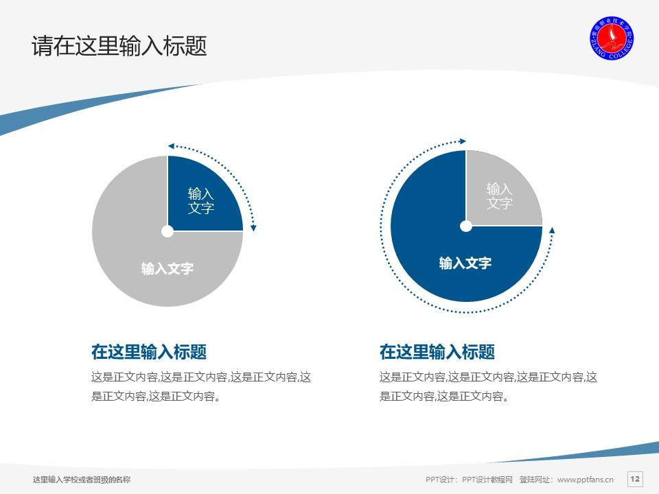 紫琅职业技术学院PPT模板下载_幻灯片预览图12