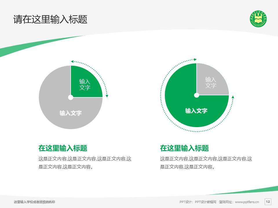 安徽粮食工程职业学院PPT模板下载_幻灯片预览图12