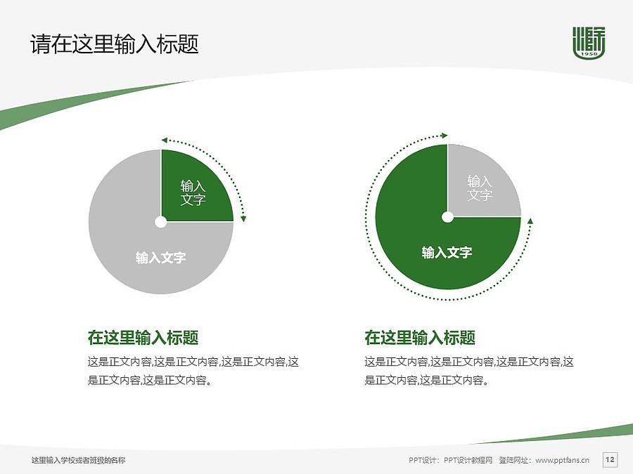 滁州学院PPT模板下载_幻灯片预览图12