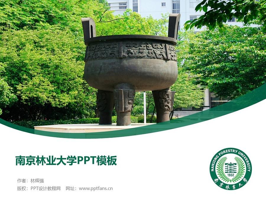 南京林业大学PPT模板下载_幻灯片预览图1