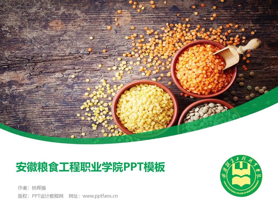 安徽粮食工程职业学院PPT模板下载_幻灯片预览图1