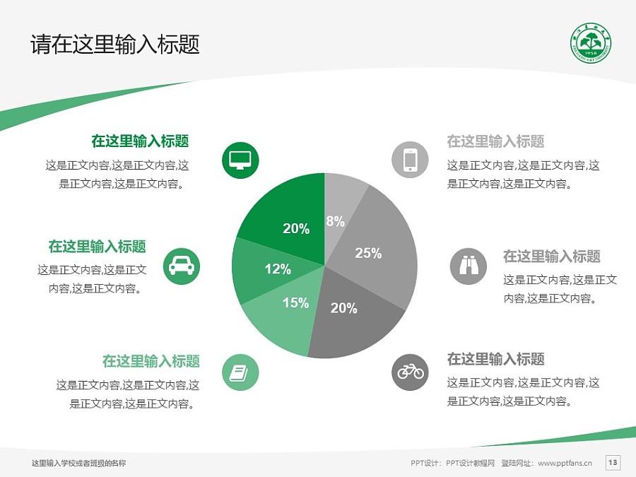 浙江农林大学PPT模板下载_幻灯片预览图13