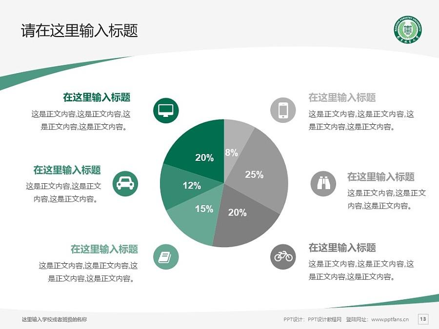 南京林业大学PPT模板下载_幻灯片预览图13