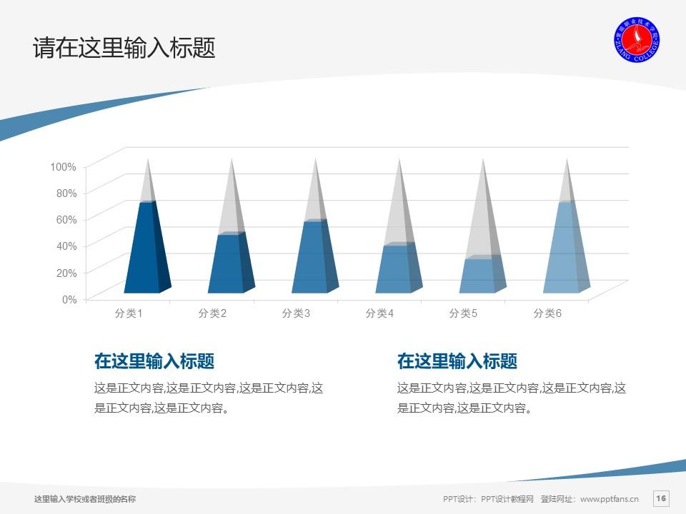 紫琅职业技术学院PPT模板下载_幻灯片预览图16